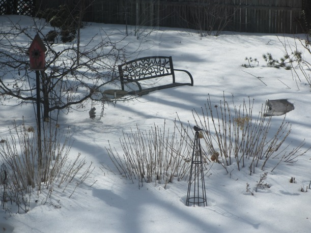 Back to Reality! Garden is still covered in a thick blanket of snow.