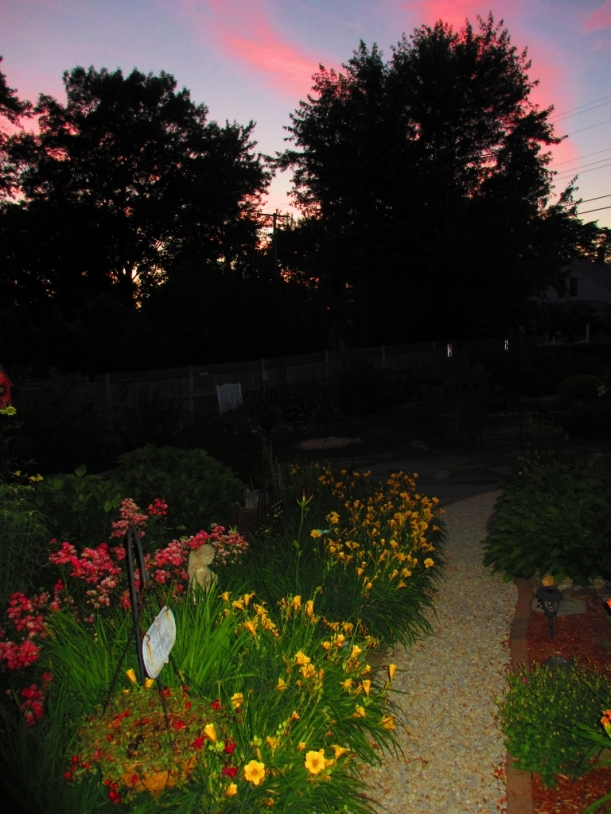 Our gorgeous, glowing garden sunset.
