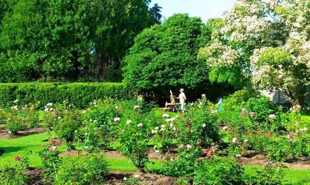 Garden2015-Fuller