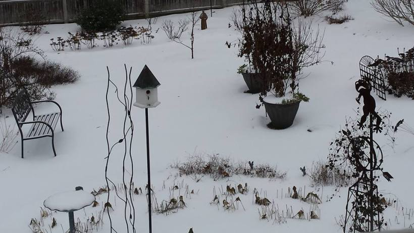 WinterBlanket