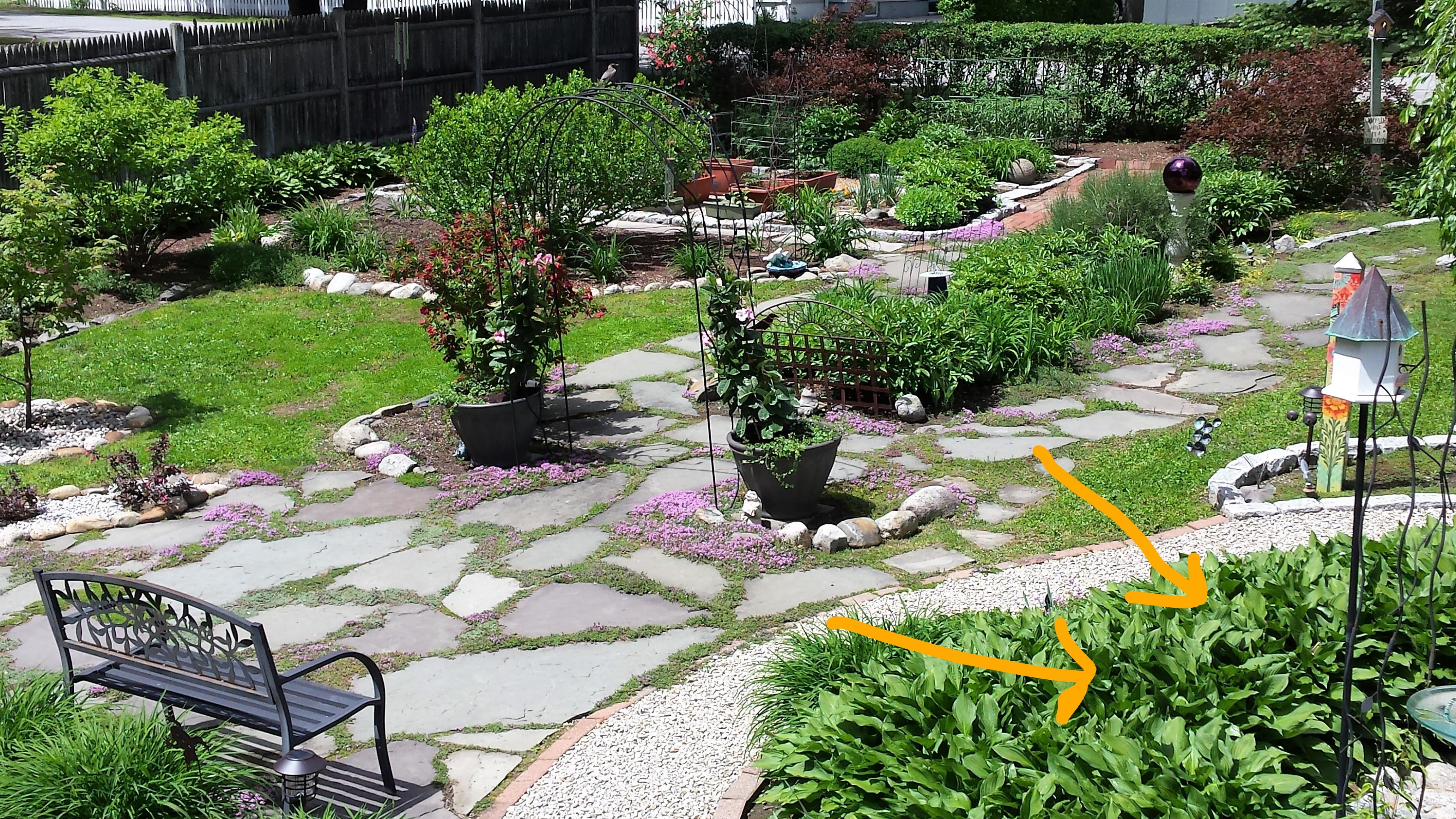 Garden Aerial_LI
